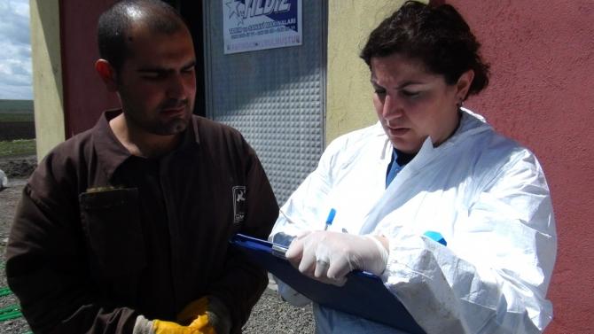 Kadın Veterinerler Köylerde Aşı ve Küpeleme Yapıyor 12