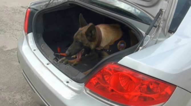 Kars'ta Narkotik Operasyon: 30 kg Eroin 2