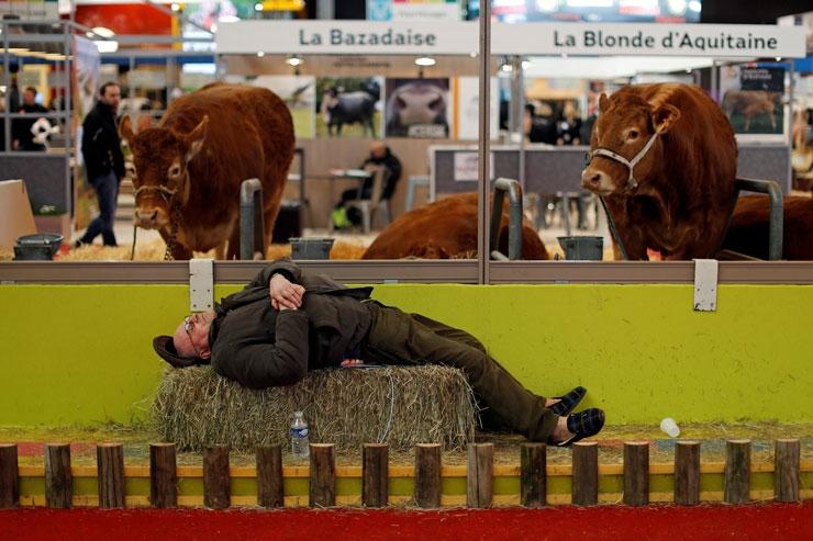 Reuters Objektifinden Yılın Fotoğrafları 18