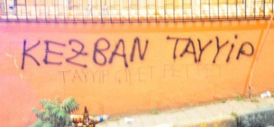 Gezi Parkı Direnişi Duvarlara da Yansıdı 13
