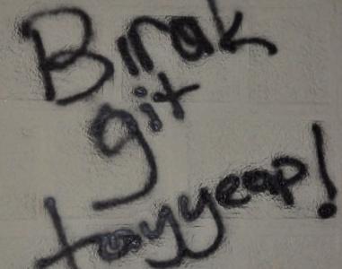 Gezi Parkı Direnişi Duvarlara da Yansıdı 19