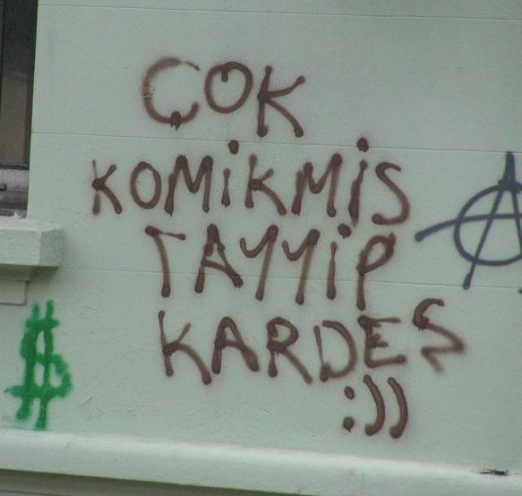 Gezi Parkı Direnişi Duvarlara da Yansıdı 20