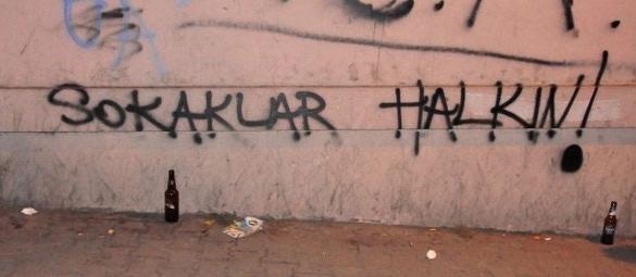 Gezi Parkı Direnişi Duvarlara da Yansıdı 5