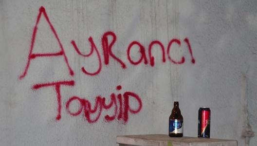 Gezi Parkı Direnişi Duvarlara da Yansıdı 8