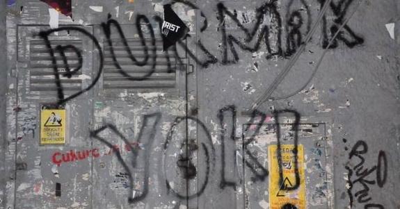 Gezi Parkı Direnişi Duvarlara da Yansıdı 9