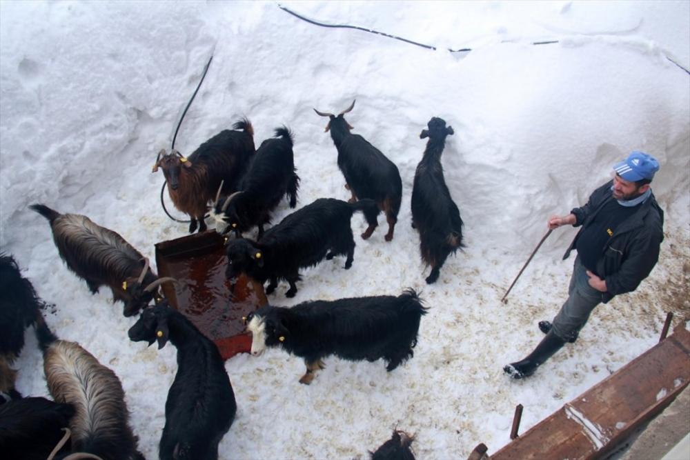 Kars'ta Kış 31