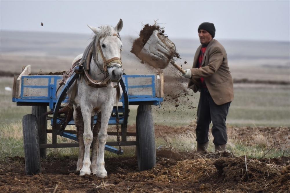 Kars'ta 'Bahar' 14