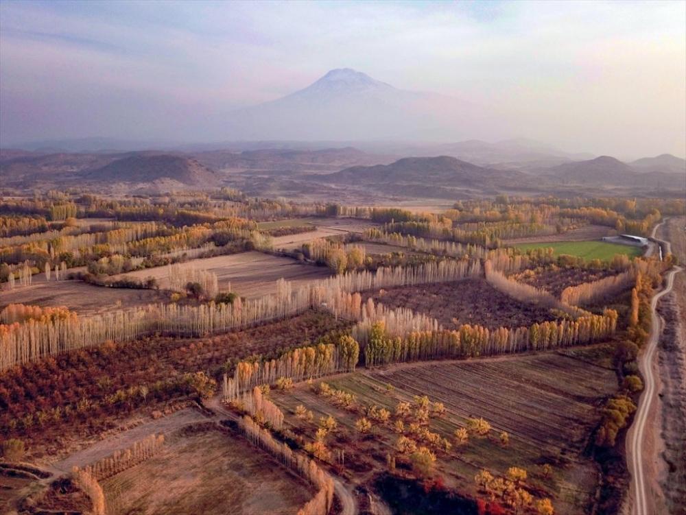 İrem Bağları ve Ağrı Dağı 2