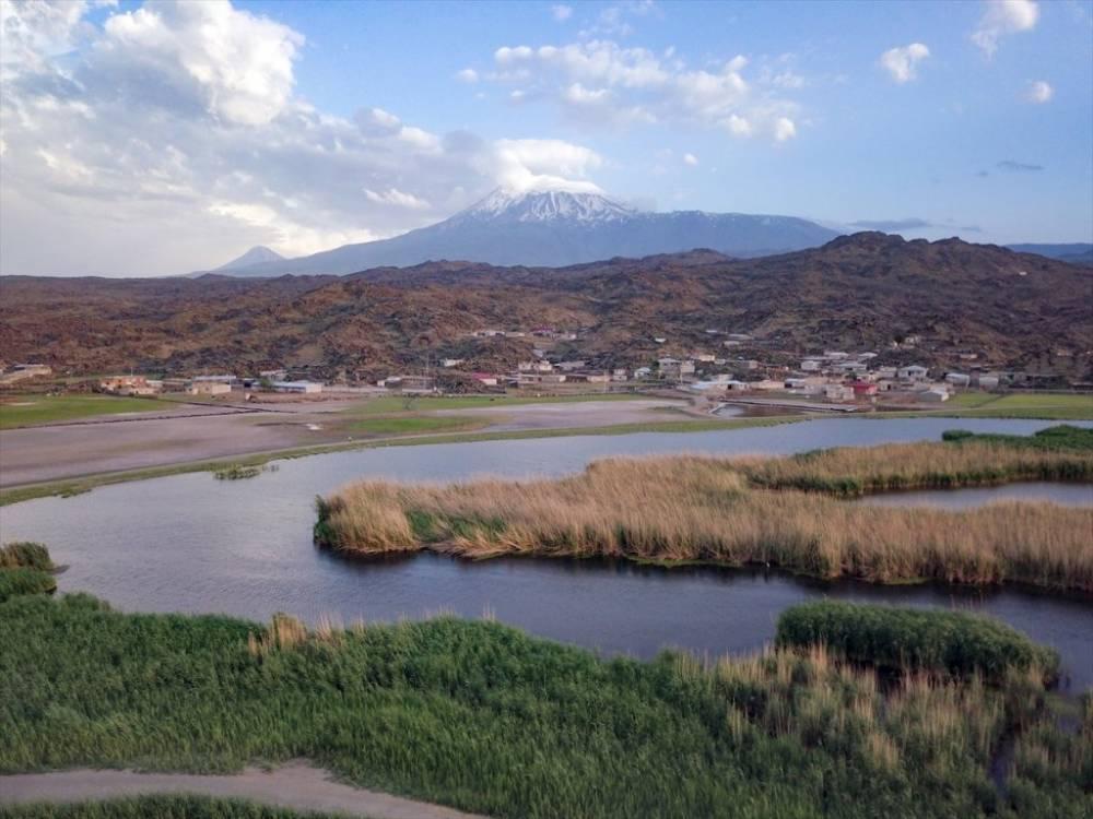 Ağrı Dağı Milli Parkı ve Yaban Hayatı 1