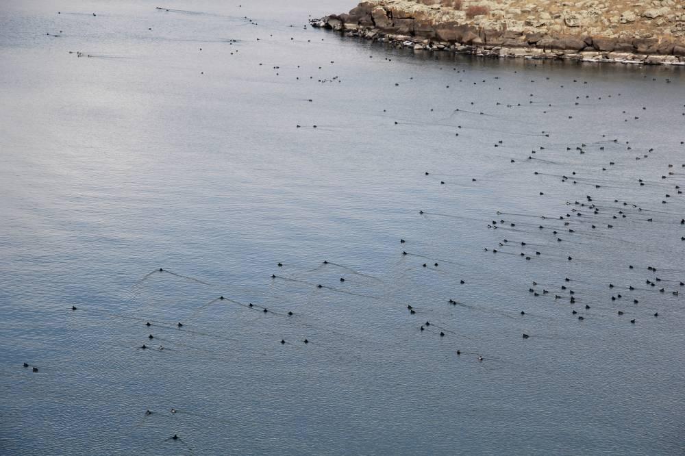 Çıldır Gölü'nde Sessizlik! 34