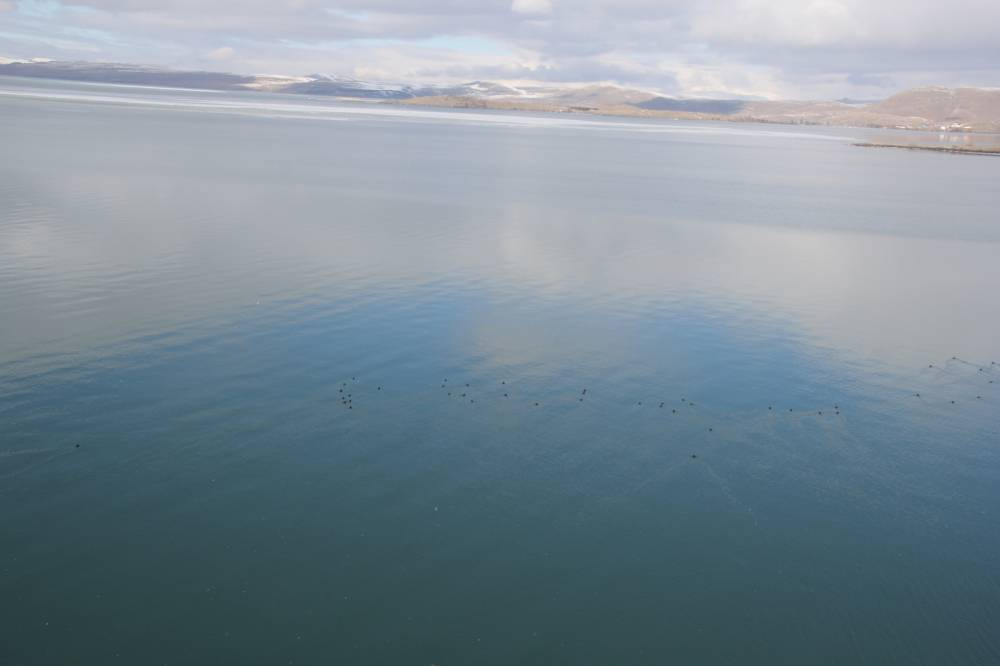 Çıldır Gölü'nde Sessizlik! 35