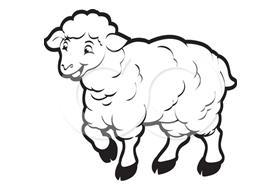 Kağızmanda 200 Koyun Telef OLDU