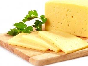Boğatepe'de Peynir Tadım Şenliği