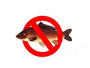 Balık Avı Yasağına Uymayanlara Para Cezası Kesilecek