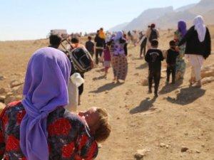 Şengal Ezidi Soykırımı IV: Şengal Dağı'nda Yaşam Mücadelesi