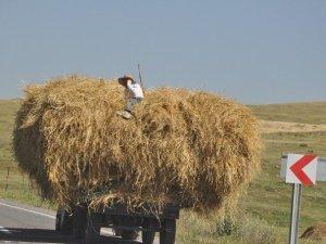 Traktör Römorku Üzerinde Tehlikeli Yolculuk