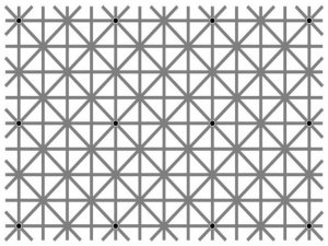 Bu Resimde Kaç Nokta Görebilirsiniz?