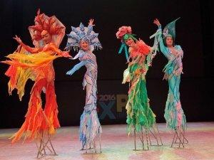 Buz Üzerindeki Sirk Gösterisi Büyüledi
