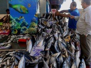 Balık Fiyatları Düştü, Vatandaşın Yüzü Güldü