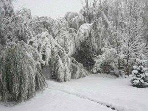 Tuzluca'da Kar Yağışı