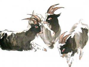 Kağızman'da Keçiler Kayalıklarda Mahsur Kaldı