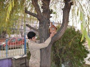 Iğdır'da Kuş Yuvası Projesi