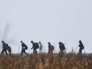 Sarıkamış'ta 80 Göçmen Yakalandı