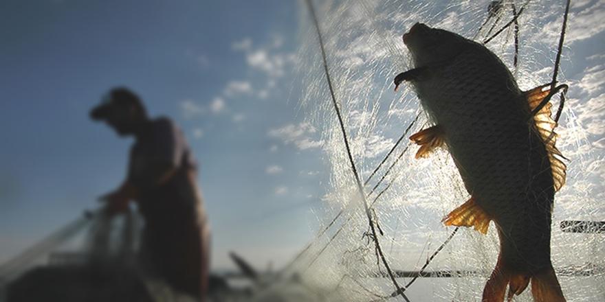 Kars'taki Göllere Yavru Balık Bırakıldı