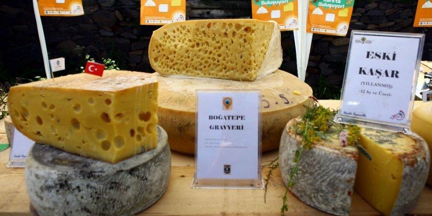 Boğatepe'de 'Anadolu Peynirleri' Fuarı