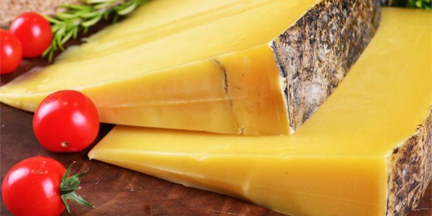 'Peynir Müzesi'ne Turistlerden İlgi