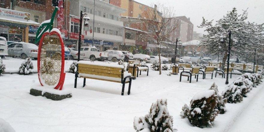 Kağızman'da Yoğun Kar Yağışı