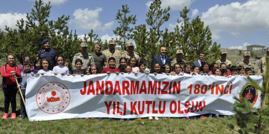 Jandarma '180. Yıldönümü'nde Fidan Dikti