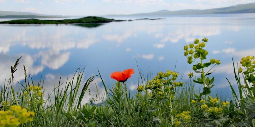 Çıldır Gölü'nde 'Kirlilik' Ölçümü Yapıldı
