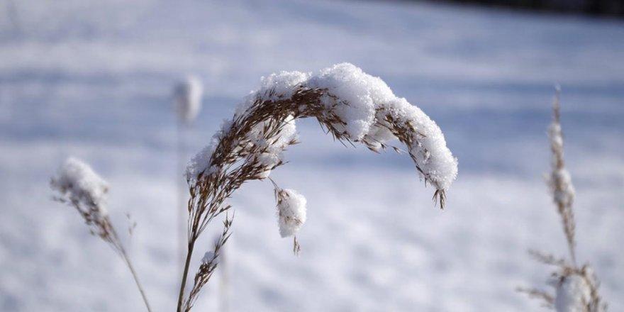 Kars'ta Kar Etkisini Artıracak