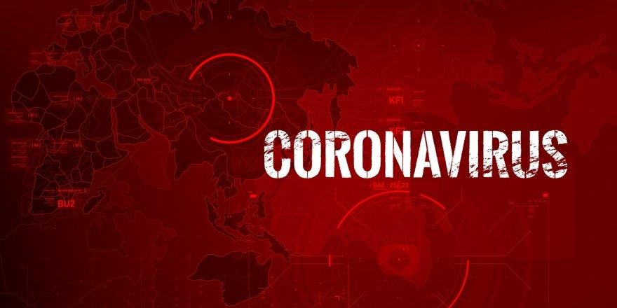 Covid -19 | Çin'den Gelen Aşılar Türkiye'de