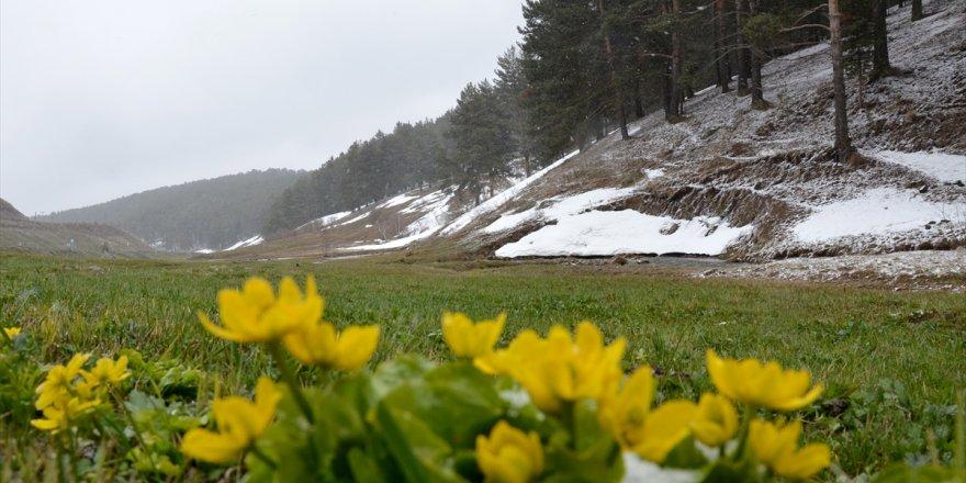 Sarıkamış'ta 'Kar' Manzaraları