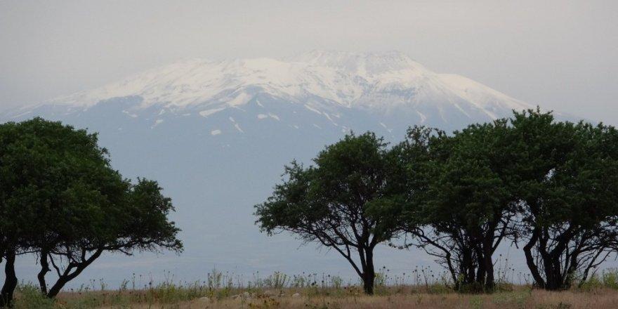 Süphan Dağı'na Temmuz'da Kar Yağdı