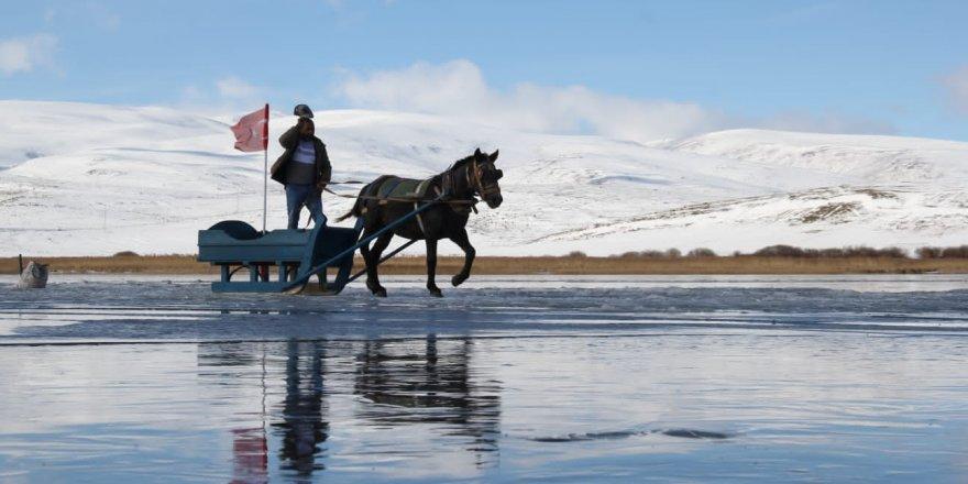 Çıldır Gölü'nde 'Atlı Kızak' Keyfi