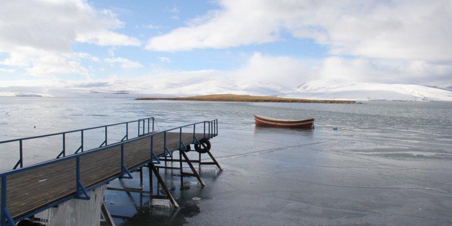 Buz Tutmayan Gölün 'Göçmeyen Kuşları'