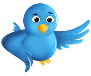Twitterda Takipçi Arttırmanın YOLLARI