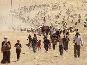 Şengal Ezidi Soykırımı II: 3 Ağustos 2014'de Neler Oldu?