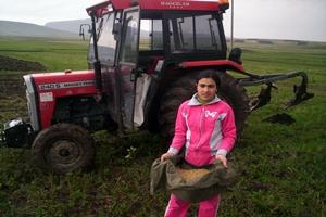 14 Yaşındaki Zeynep, Traktör Sürüyor