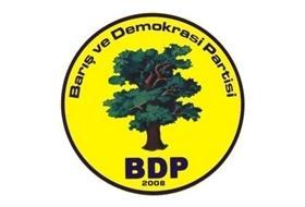 BDP, Dilin Özgürlüğü Statü İle OLUR