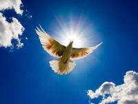 Kağızman'da Kan Davalı Aşiretler Barıştı