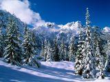 Posofta Kar Yağışı Etkili OLUYOR