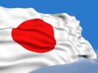 Polisan Boya'nın Yarısı Japonların Oldu