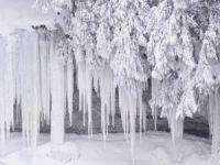 Posof'un Yüksek Kesimlerinde Kar