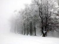 114 Köyün Kars ile Bağlantısı Kesildi