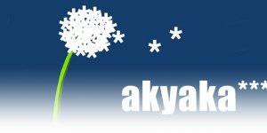 Akyaka Belediyesi'nin Çalışmaları