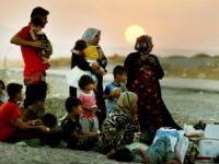 Şengal Ezidi Soykırımı III: Bizi Kirvelerimiz Öldürdü